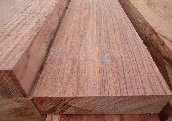 木材构造 横断面:心边材区别明显。心材红褐色,常具紫色条纹。边材白色,宽5~8cm。生长轮略明显。 树皮:厚0.5~1.5cm,质硬脆,不易折断、剥落。外皮灰褐色至灰白色;皮孔明显;外皮呈圆形小鳞片状脱落,残留卵圆形浅凹坑。内皮深棕褐色;树皮受伤后会流出红色胶质。 大乔木;高24~30m,直径1.