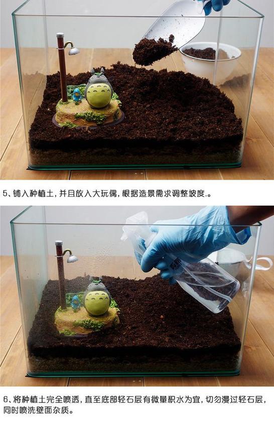 龙猫苔藓景观制作过程