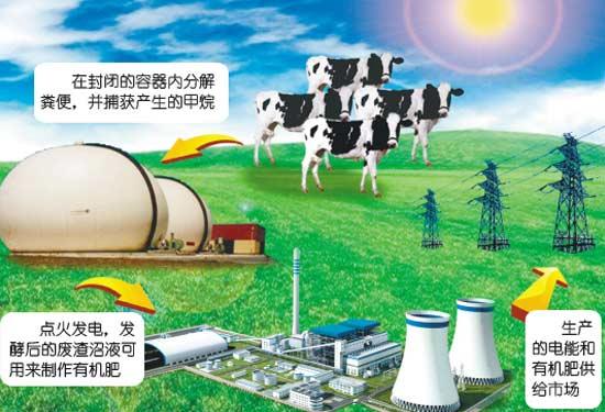 沼气燃烧发电是随着大型沼气池建设和沼气综合利用的不断发展而出现的一项沼气利用技术,它将厌氧发酵处理产生的沼气用于发动机上,并装有综合发电装置,以产生电能和热能。沼气发电具有创效、节能、安全和环保等特点,是一种分布广泛且价廉的分布式能源。